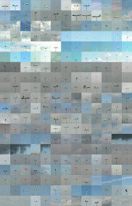 aalscholvers 95 x 60 cm